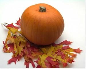 Septembre – Calendrier des Fruits et Légumes