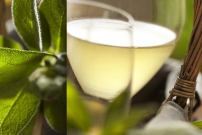 Vin blanc glacé à la sauge et au miel (idée apéritif pour les fêtes)