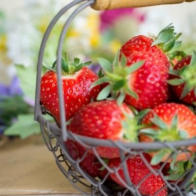 Avril – Calendrier des Fruits et Légumes