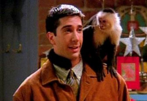 Photo de Ross et son singe Marcel