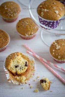 Muffins aux cranberries séchées (airelles ou canneberges)