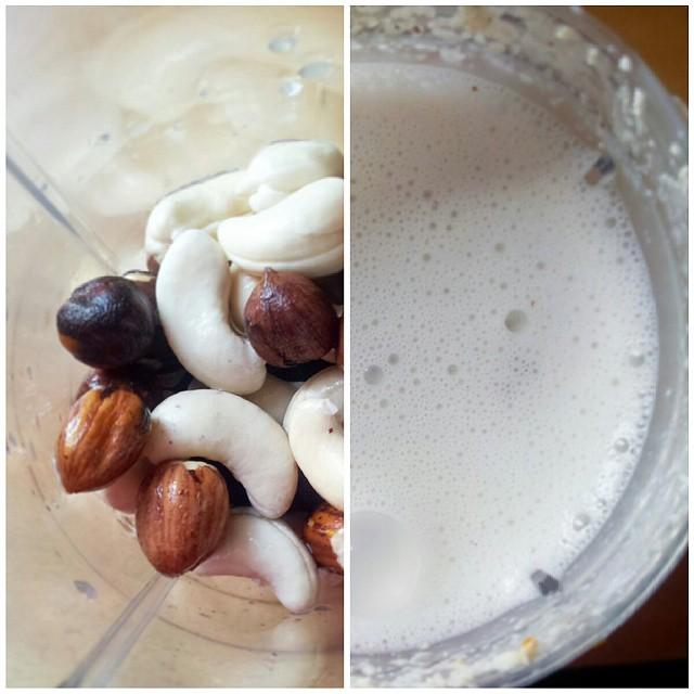 Lait végétal noix de cajou et noisettes | Jujube en cuisine