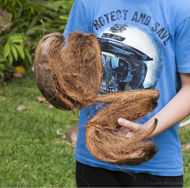 Comment ouvrir une noix de coco jujube en cuisine for En cuisine avec coco
