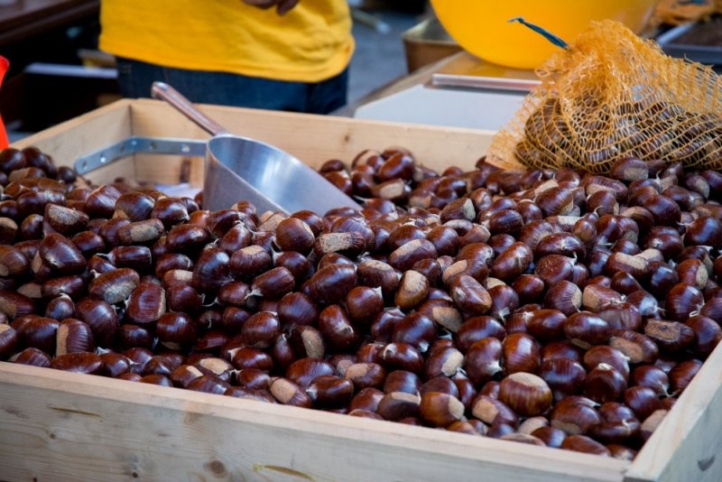 22ème foire de la pomme et de l'oignon doux des Cévennes | Jujube en cuisine