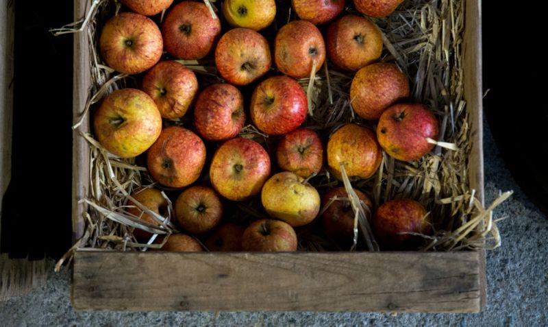 Les recettes à base de pommes